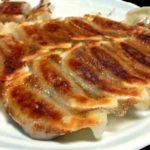 世界で食べれる餃子の種類・特徴などを調べてみました